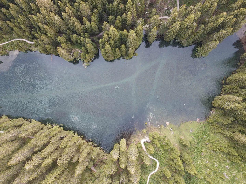 lago careza